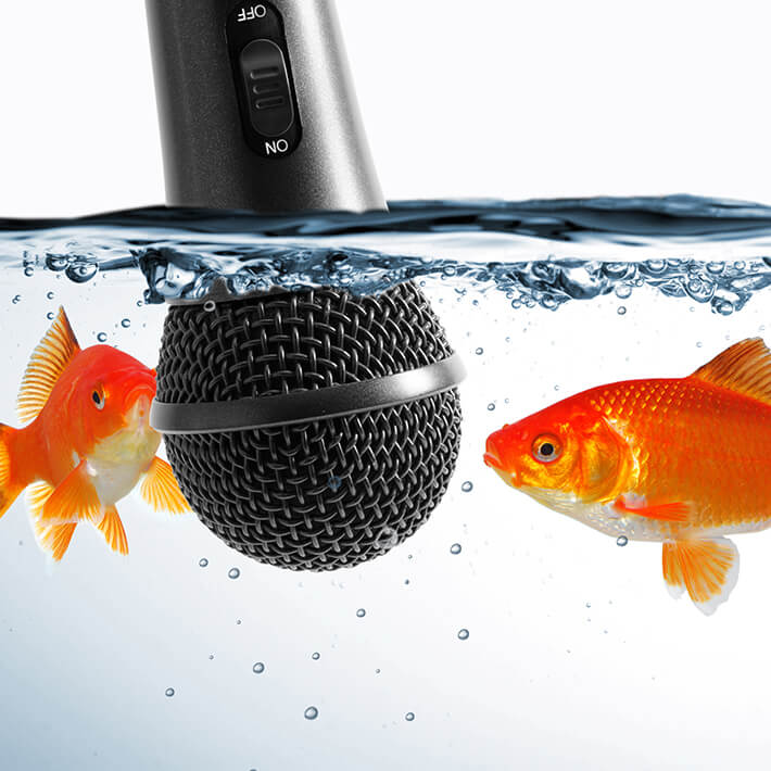 two goldfish speaking into a microphone